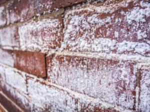 Salt on Walls